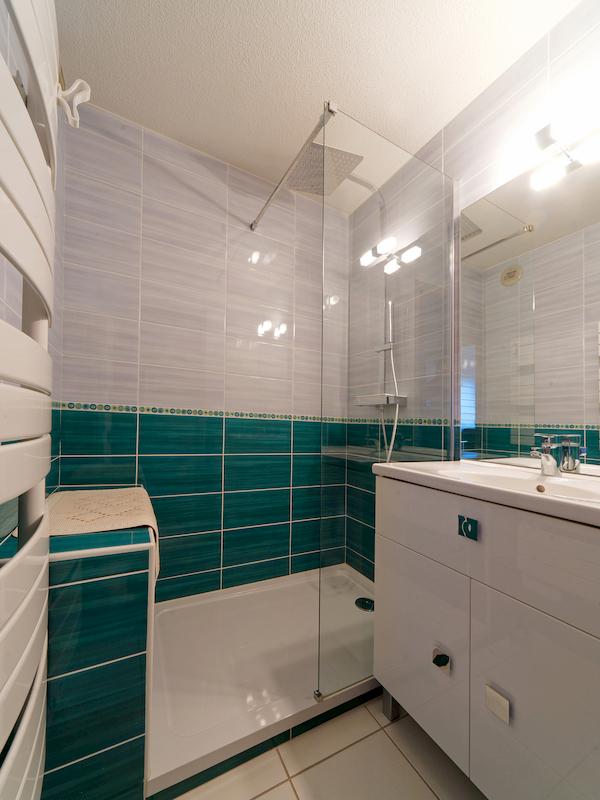 salle de bain avec douche appartement 311