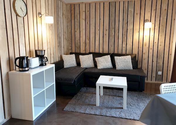 salon appartement n°407 résidence les silènes